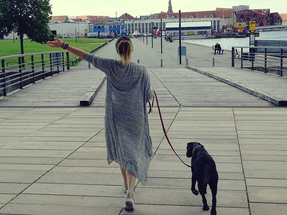 Developing your potential with your dog
