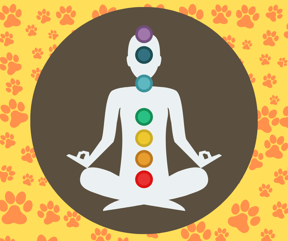 A spiritual approach to living with a dog